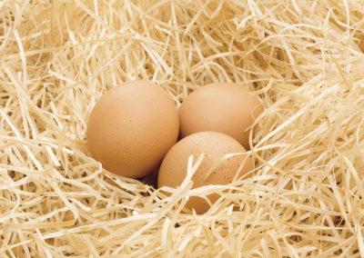 26 Uova nella paglia