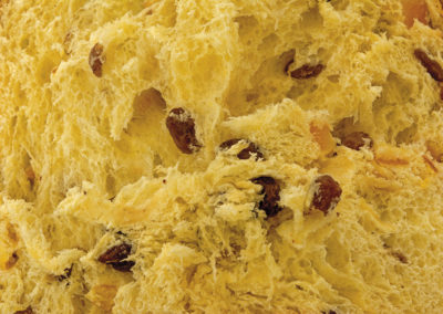 27 Close up Panettone