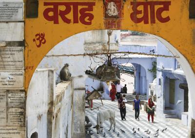 55 Pushkar Rajasthan India