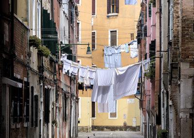 56 Venezia