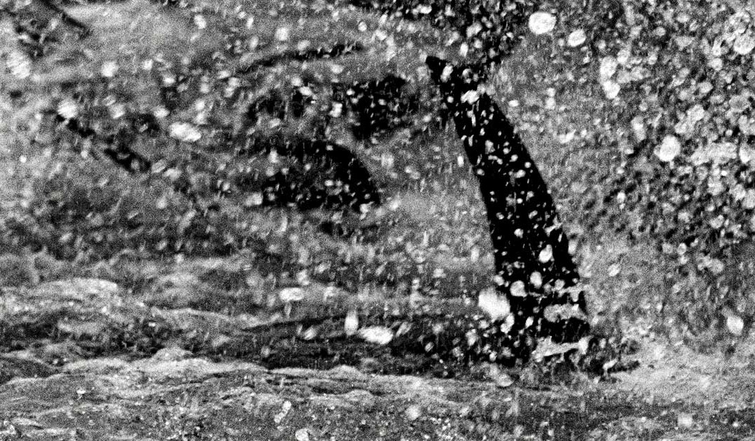 MONZINO PHOTOGRAPHER