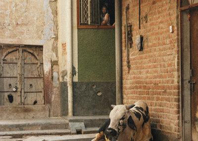 Bikaner Ragazzo alla finestra